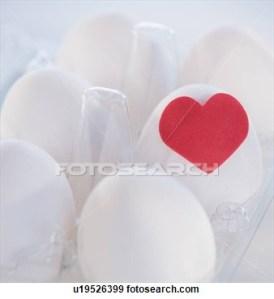 studio-shot-eggs_~u19526399