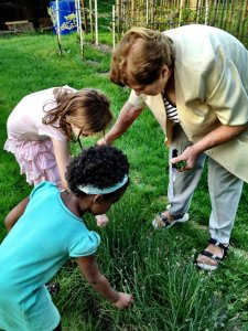 Babička and my daughters picking herbs growing in the vast, lush garden.