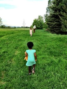 Our walks through the countryside.